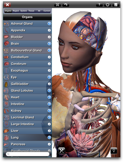 Zygote 3d Anatomy Atlas Dissection Lab Lindsay Virtual Human