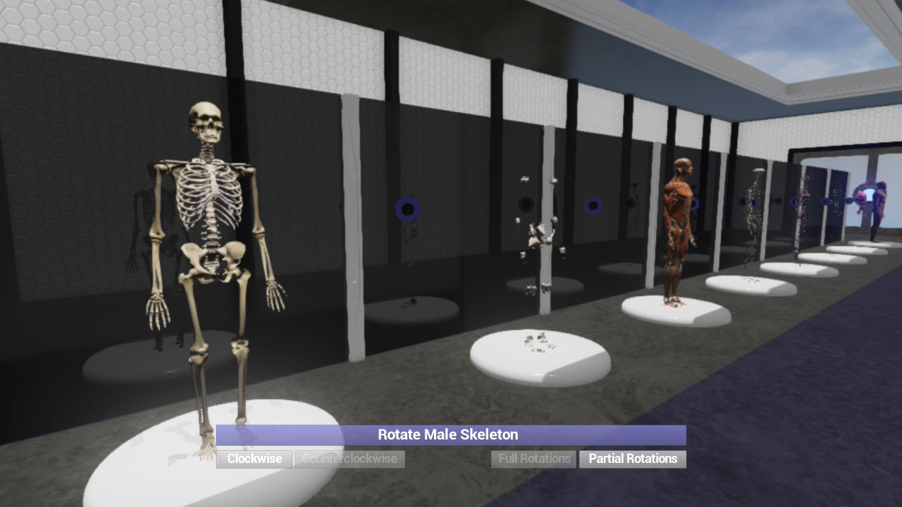 LINDSAY VR BodyGallery